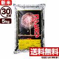 【新米】30年産新潟産コシヒカリ花火 5kg