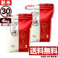 【新米】 30年産新潟県産 新之助 4kg(2kg×2袋)
