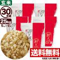 30年産新潟県産 新之助 玄米 25kg