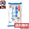 【窒素置換米】30年産新潟県魚沼産コシヒカリSFパック 3kg