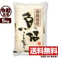 【地域限定】令和元年産新潟県南魚沼産コシヒカリ 5kg