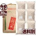 令和元年産 新潟県中魚沼産コシヒカリ 30kg 小分け6袋【一等米使用】【送料別】