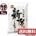 令和元年産 新潟県岩船産コシヒカリ 5kg【一等米使用】