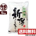 【地域限定】令和元年産 新潟県小国産コシヒカリ 5kg