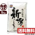 令和元年産 新潟県佐渡産コシヒカリ 5kg【一等米使用】