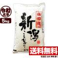 【地域限定】新米 令和元年産 新潟県高柳産コシヒカリ 5kg【一等米使用】