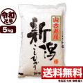 【地域限定】令和元年産 新潟県山古志産コシヒカリ 5kg