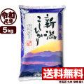 【新米】令和元年産 新潟県産コシヒカリ 山並 5kg