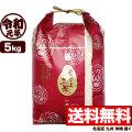 【新米】令和元年産 ありがとう三米 5kg (品種名:いのちの壱)