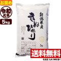 新米 令和元年産新潟県産キヌヒカリ 5kg【11月のお奨め銘柄】
