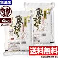 【無洗米】令和元年産新潟県南魚沼産コシヒカリ 吟精 4kg(2kg×2)