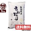 令和元年産新潟県産キヌヒカリ 5kg