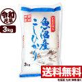 【新米】【窒素置換米】令和元年産 新潟県魚沼産コシヒカリSFパック 3kg