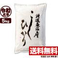 新米 令和元年産 魚沼産コシヒカリ特選 5kg