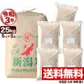 新米 令和3年産 新潟産コシヒカリ山並 玄米 小分け5袋 25kg