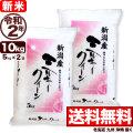 新米 令和2年産 新潟県産ミルキークイーン 10kg(5kg×2)