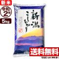 新米 令和2年産 新潟県産コシヒカリ 山並 5kg