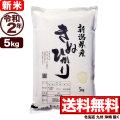 新米 令和2年産新潟県産キヌヒカリ 5kg
