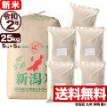 新米 令和2年産 新潟産コシヒカリ山並 玄米 小分け5袋 25kg