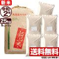 新米 【地域限定】令和2年産 新潟県北魚沼産コシヒカリ 小分け5袋 25kg