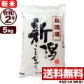 【新米】令和2年産新潟県長岡産コシヒカリ 5kg