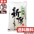 新米 【地域限定】令和2年産 新潟県小国産コシヒカリ 5kg