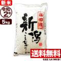 【新米】【地域限定】令和2年産 新潟県高柳産コシヒカリ 5kg【一等米使用】