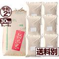 令和2年産 新潟県産ミルキークイーン玄米 30kg【送料別】