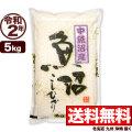 令和2年産 新潟県中魚沼産コシヒカリ 5kg