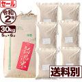 令和元年産 新潟県産キヌヒカリ玄米 30kg【今月のお奨め銘柄】