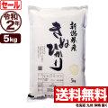 令和2年産新潟県産キヌヒカリ 5kg【今月のお奨め銘柄】
