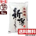 令和2年産新潟県長岡産コシヒカリ 5kg【7月のお奨め】