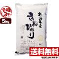 新米 令和3年産新潟県産キヌヒカリ 5kg