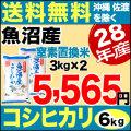 新米28年産魚沼産コシヒカリスーパーフレッシュパック6kg