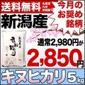 【今月のおすすめ銘柄】30年産新潟県産キヌヒカリ 5kg