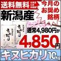 【今月のおすすめ銘柄】30年産新潟県産キヌヒカリ 10kg(5kg×2)
