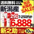 29年産新潟県産 新之助 10kg(2kg×5袋)【お買い得セール】