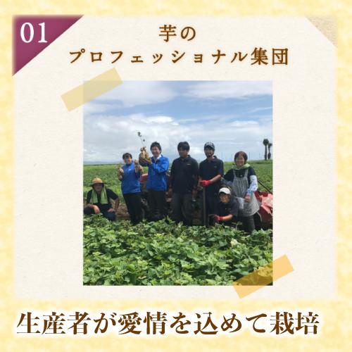 メイトー 安納芋の蜜プリン 105g×8個 要冷蔵