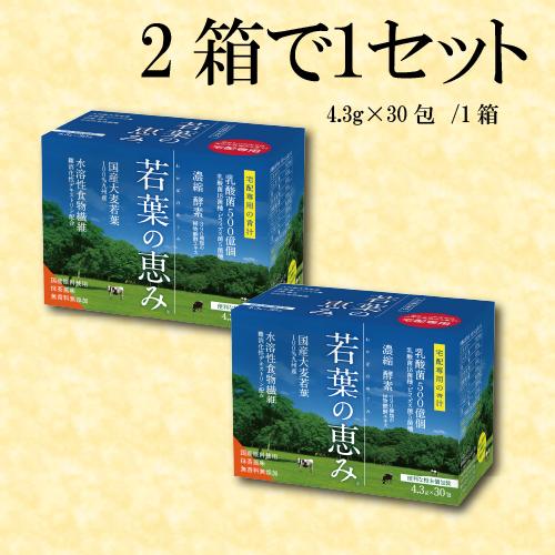 若葉の恵み 青汁 2箱セット 1箱あたり30包入り