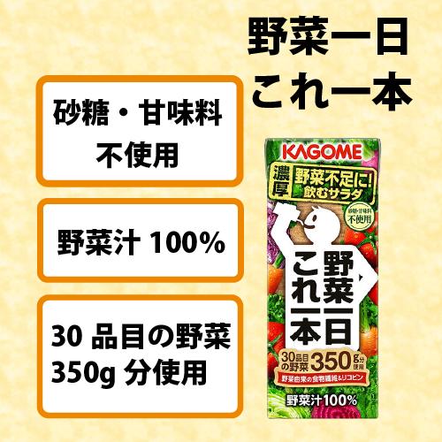 カゴメ 野菜一日これ一本 紙パック 200ml ×24本 1ケース