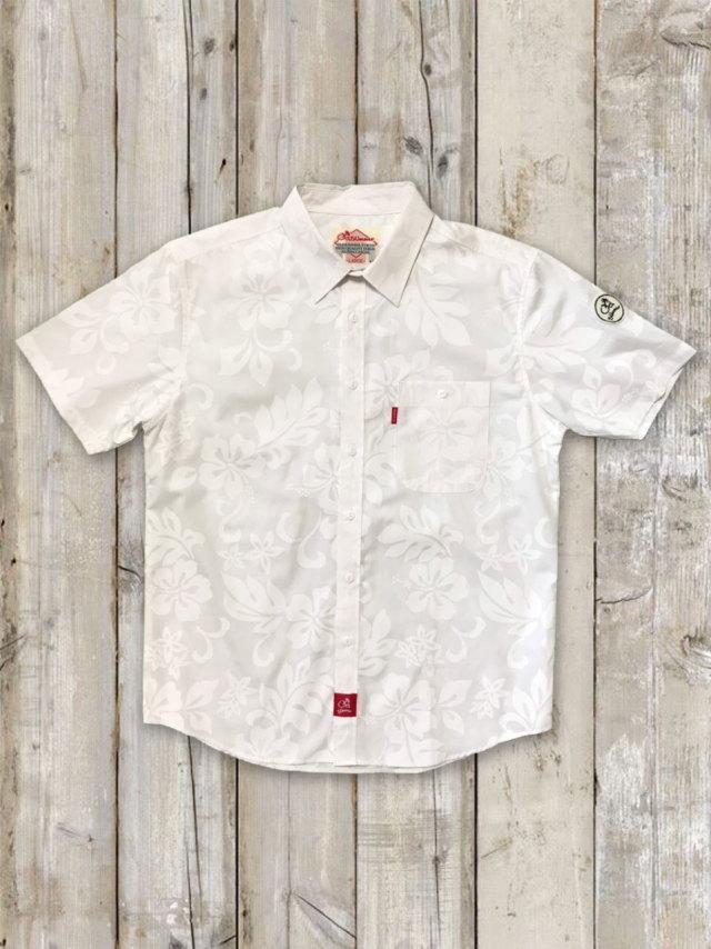 アロカジシャツ(レギュラーB)