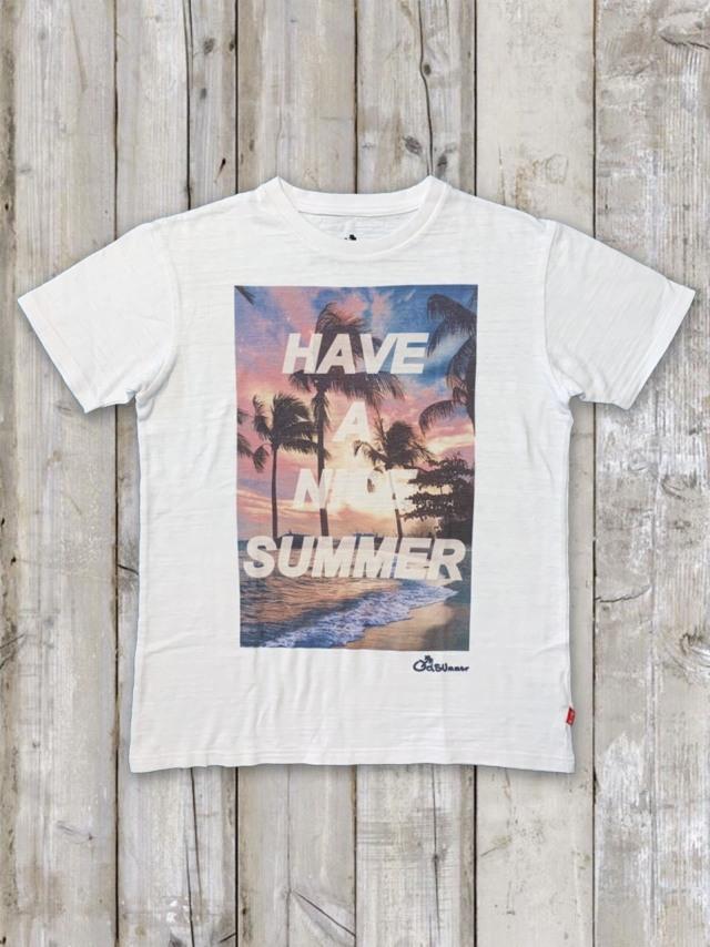 スラブTシャツ(HAVE A NICE SUMMER)