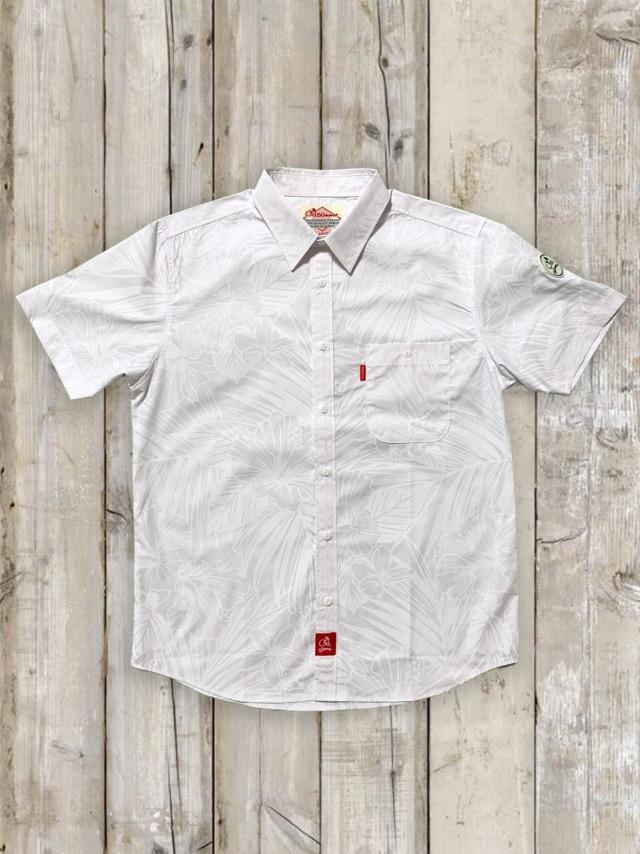 アロカジシャツ2020(D)