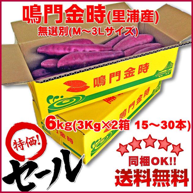 【送料無料】鳴門金時芋(里浦産)6Kg(3Kg×2箱)