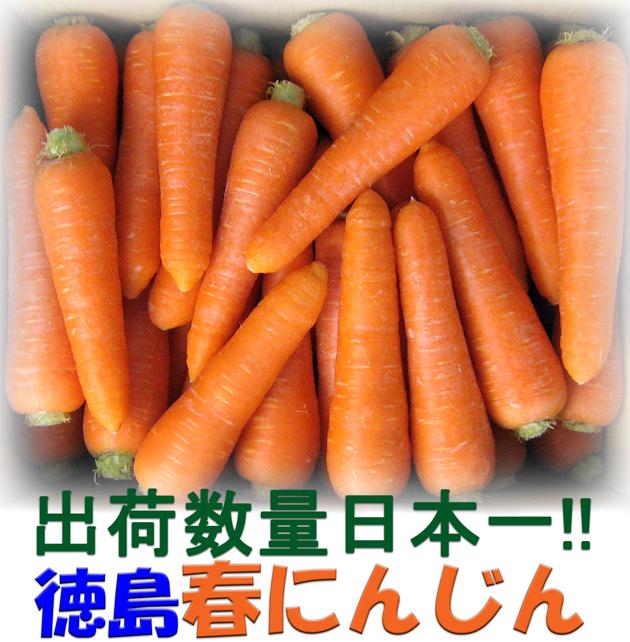 【出荷量日本一】徳島の春にんじん 10Kg【新鮮なっ!!徳島】【クール便】