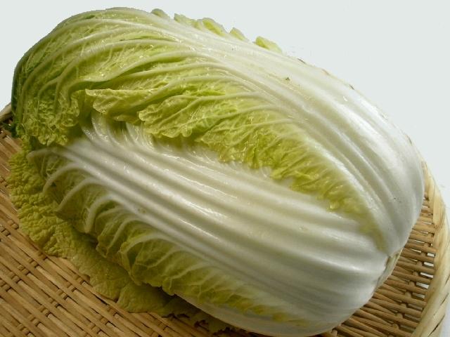白菜(晴舞台)