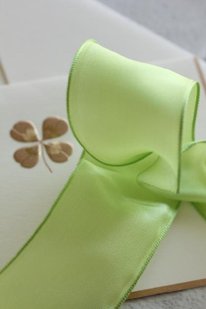 フランス製ワイヤーリボン・スタンダード Pistachio green 40ミリ幅