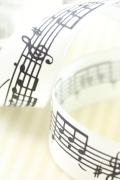 ドイツリボン・Music 40ミリ幅