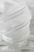 フランス製ワイヤーリボン シースルーエッジWHITE 25ミリ幅