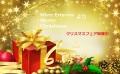 X'masフェア★¥16000以上のご注文でスワロ手袋をプレゼント★先着30名様